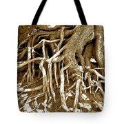 Crater Lake Tree Tote Bag