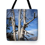 Crater Lake Tree Tote Bag