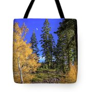Crater Moon Tote Bag