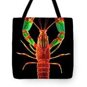 Crawfish In The Dark - Rouillegreen Tote Bag