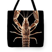 Crawfish In The Dark - Sepia Tote Bag