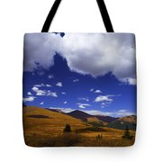 Crazy Blue Sky Tote Bag by Barbara Schultheis
