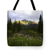 Crazy Wildflowers Tote Bag by Barbara Schultheis