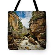 Crazy Woman Canyon Tote Bag