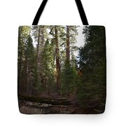 Creek And Giant Sequoias In Kings Canyon California Tote Bag