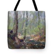 Creek At Lockport Natural Trail Tote Bag