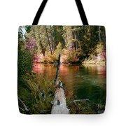 Creek Fall Tote Bag