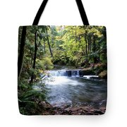 Creek, Frozen In Time Tote Bag