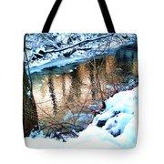 Creek In Bath Ohio Tote Bag