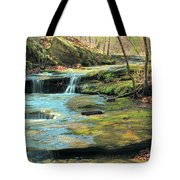 Creek In Dappled Light At Don Robinson State Park 1 Tote Bag