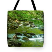 Creek In Great Smoky Mountains National Tote Bag