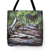 Creek In The Park Tote Bag