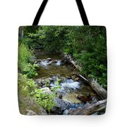 Creek On Mt. Spokane 1 Tote Bag