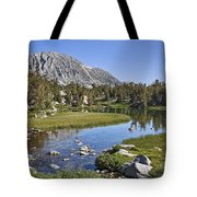 Creek With A View Tote Bag