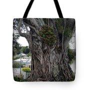 Creepy Tree Tote Bag