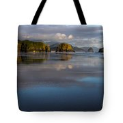Crescent Beach Reflections Tote Bag