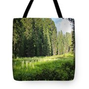 Crescent Meadow In Sequoia Tote Bag