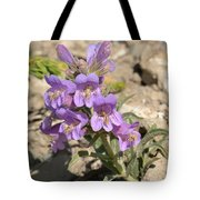 Crested Beardtongue Tote Bag