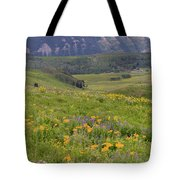 Crested Butte Valley Tote Bag