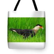 Crested Caracara 5 Tote Bag