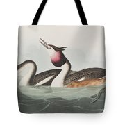 Crested Grebe Tote Bag