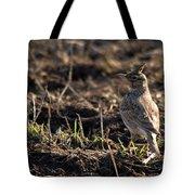 Crested Lark Tote Bag