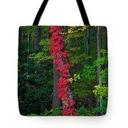 Crimson Creeper Tote Bag