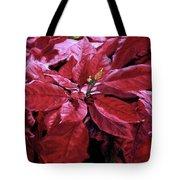 Crimson Joy Tote Bag