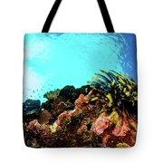 Crinoid Silhouette Tote Bag