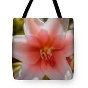 Crinum Lilies Tote Bag