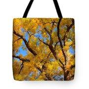 Crisp Autumn Day Tote Bag