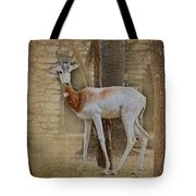 Critically Endangered Dama Gazelle Tote Bag