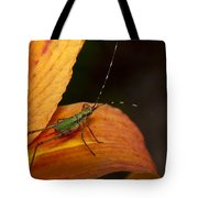 Critter-1 Tote Bag