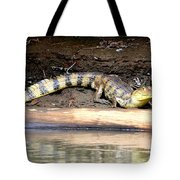 Croc Time Tote Bag