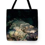 Crocodile Fish On Coral Tote Bag
