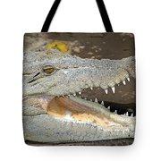 Crocodile Rock Tote Bag