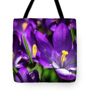Crocus Amongst Us Tote Bag