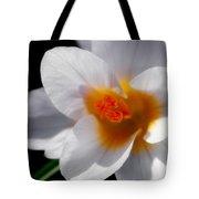 Crocus Blossom Tote Bag