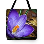 Crocus Emerging Tote Bag