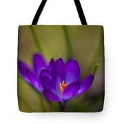Crocus Petals Tote Bag