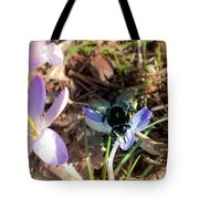 Crocuses And Fly Tote Bag