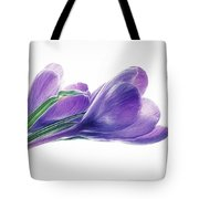 Crocuses - Impressions Tote Bag