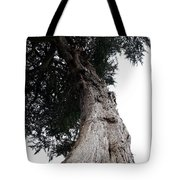 Crone Tree Tote Bag