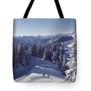 Cross-country Skiing In Aspen, Colorado Tote Bag