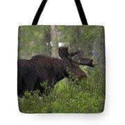 Cross Moose Tote Bag