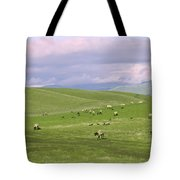 Cross Road Sheep Tote Bag