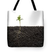 Cross-section Of Soybean Seedling Tote Bag