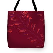 Crossing Branches 14 Tote Bag