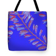 Crossing Branches 17 Tote Bag
