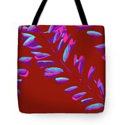 Crossing Branches 7 Tote Bag